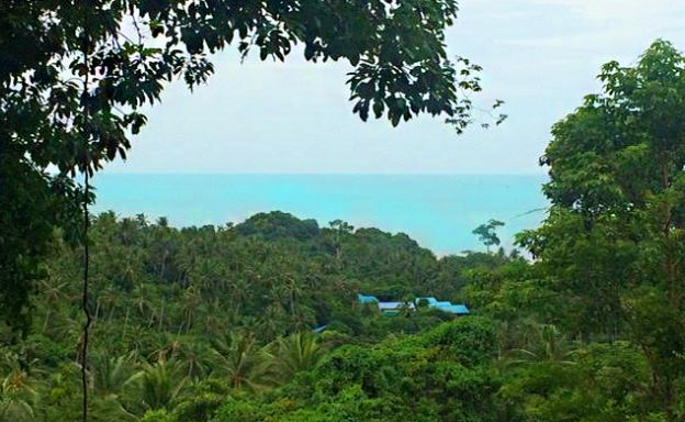New Sea View Land for Sale in Lamai