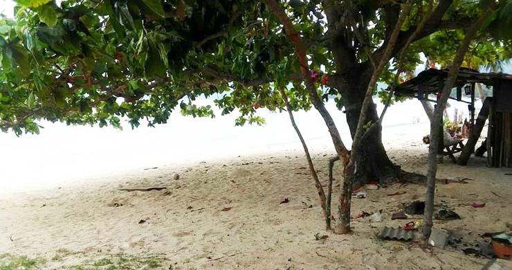 Koh Samui Beachfront Land for Sale on Lipa Noi Bay-6