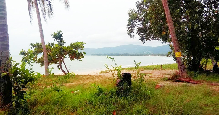 Koh Samui Beachfront Land for Sale on Lipa Noi Bay-5