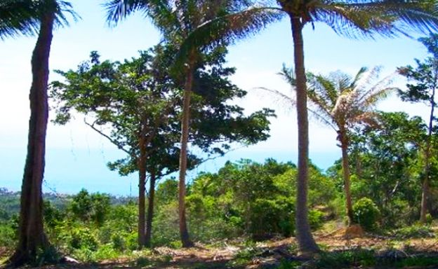 Beautiful Sea view Land for Sale in Bang Por Hills