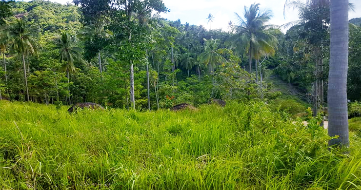 Koh Samui Sea View Land for Sale in Chaweng Noi-4