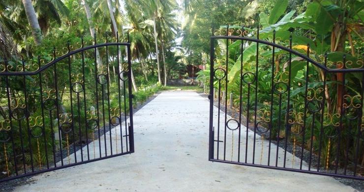 Charming Flat Coconut Land Plot for Sale in Lipa Noi-6
