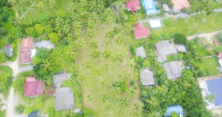 Charming Flat Coconut Land Plot for Sale in Lipa Noi-5