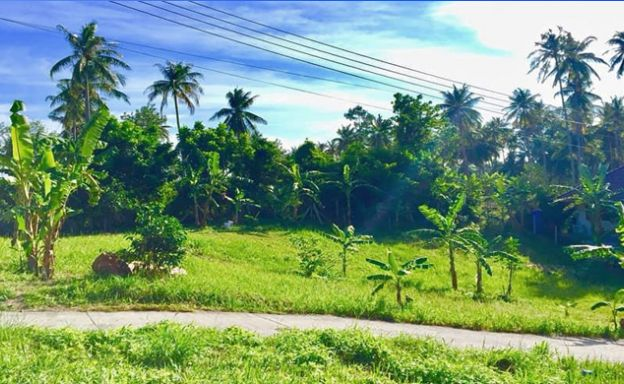 Bargain Private Land for Sale in Peaceful Maenam