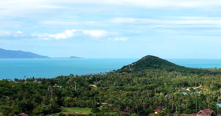 Panoramic Sea view Land for Sale on Ban Tai Hillside-5