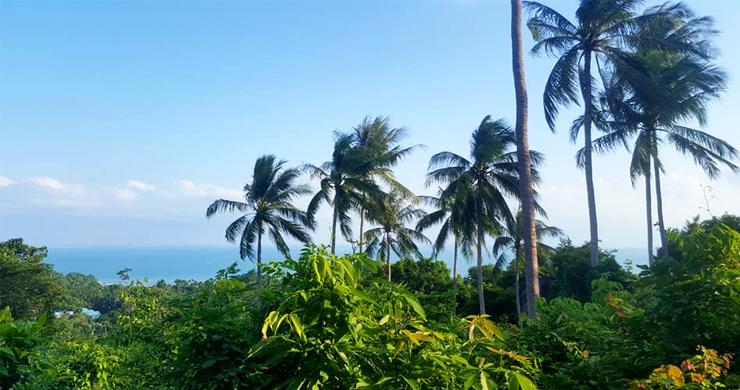 Premium Sea view Land Plot for Sale on Lamai Hills-1