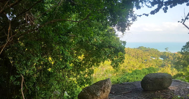 Premium Sea view Land Plot for Sale on Lamai Hills-5