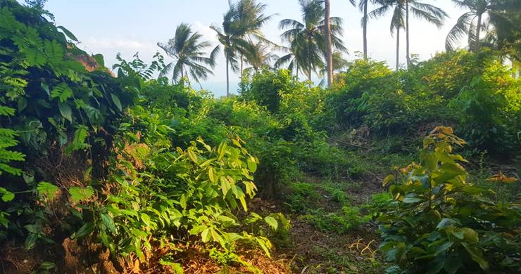 Premium Sea view Land Plot for Sale on Lamai Hills-6