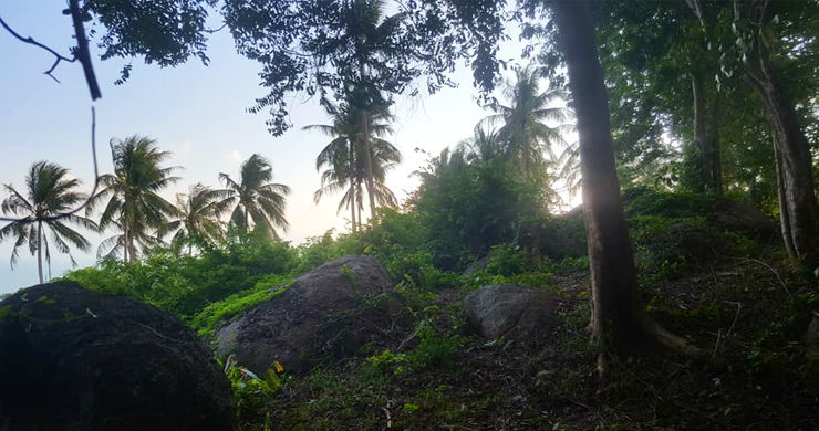 Premium Sea view Land Plot for Sale on Lamai Hills-7