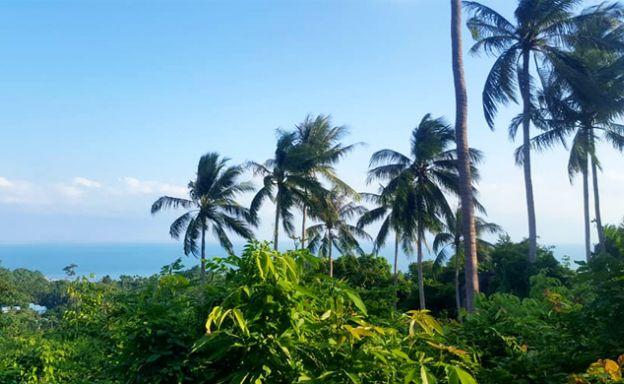 Premium Sea view Land Plot for Sale on Lamai Hills