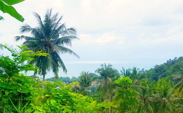 Stunning Sea view Land Plot for Sale in Lush Lamai Hills
