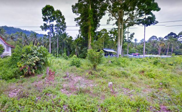 Affordable Flat Land Plot for Sale in Peaceful Lipa Noi
