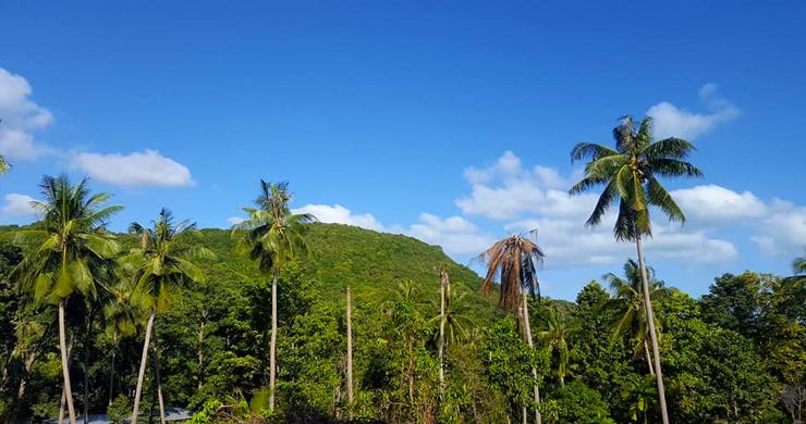 Beautiful Sea-view Land Plot for Sale in Bangrak Hillside-3