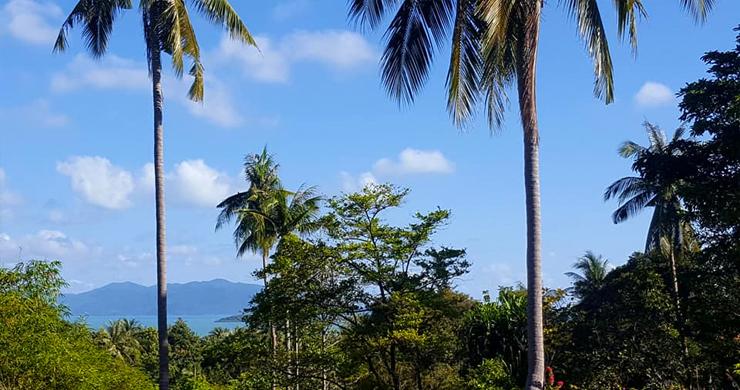 Beautiful Sea-view Land Plot for Sale in Bangrak Hillside-4