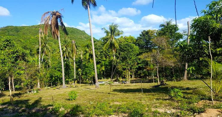 Beautiful Sea-view Land Plot for Sale in Bangrak Hillside-5