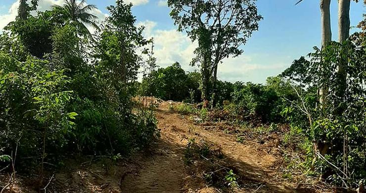 Pristine Sea view Land for Sale on Ban Tai Hillside-6