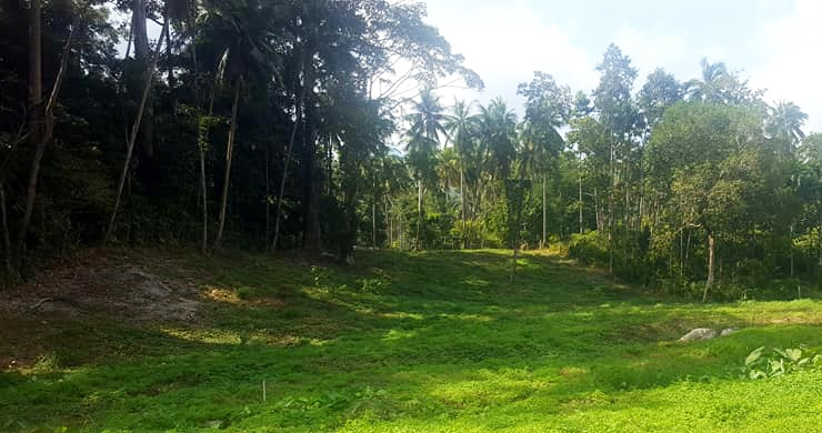 Affordable Flat Land for Sale in Peaceful Part of Lamai-8