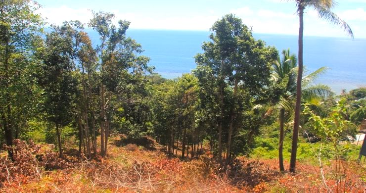 Exclusive Sunset Sea View land for Sale in Koh Phangan-2