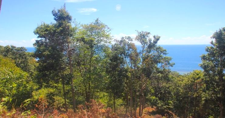 Exclusive Sunset Sea View land for Sale in Koh Phangan-4