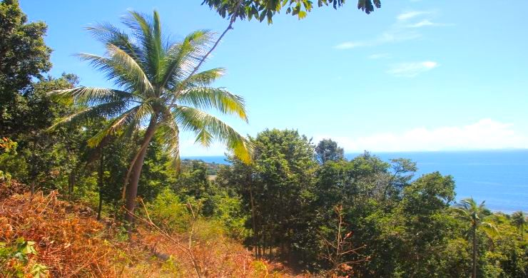 Exclusive Sunset Sea View land for Sale in Koh Phangan-5