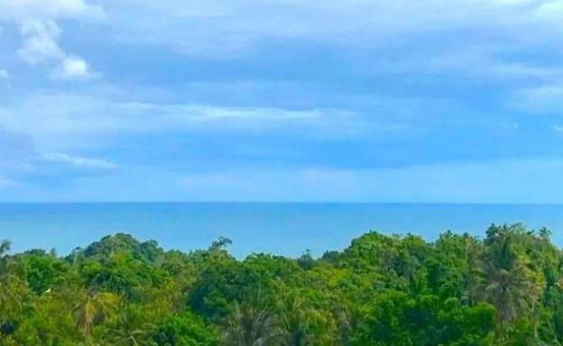 Good Sea View Land for Sale in Lamai Hillside
