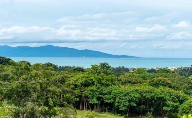 Koh Samui 1 Rai Sea View Land for Sale in Bophut