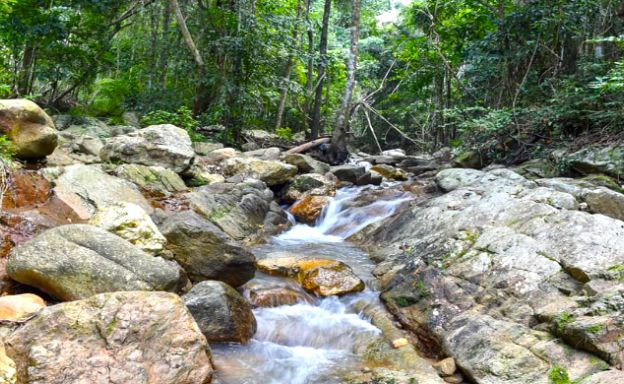 Peaceful Flat Land for Sale with Waterfall in Maenam