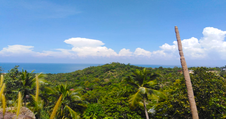 Hot Price Koh Phangan Land for Sale in Haad Yao-3
