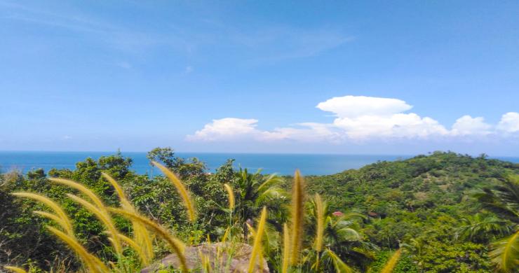 Hot Price Koh Phangan Land for Sale in Haad Yao-1
