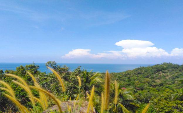 Hot Price Koh Phangan Land for Sale in Haad Yao