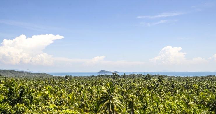 Tropical 3 Bedroom Sea View Villa in Koh Phangan-10