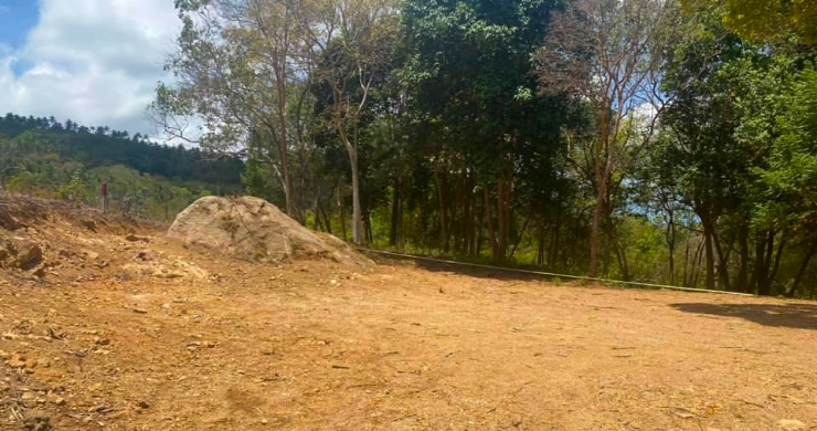 Hot Price Prime Sea-view Land for Sale in Bophut-4
