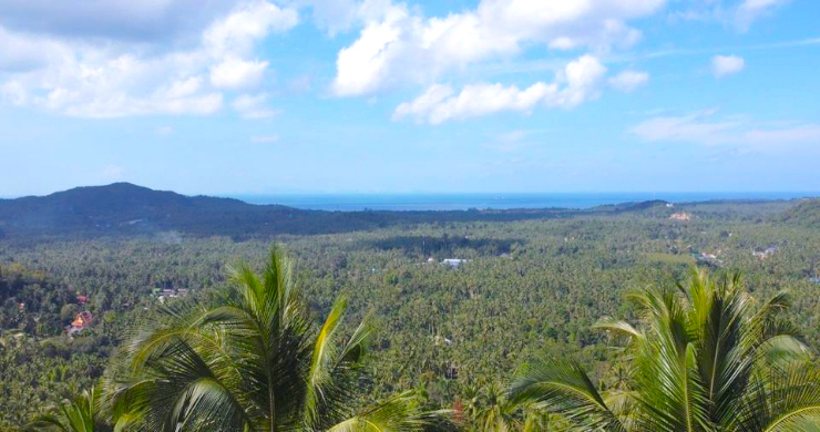 Hot Price Sea-view Land for Sale in Hin Kong-3