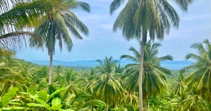 koh-phangan-sea-view-land-for-sale-ban-tai-1