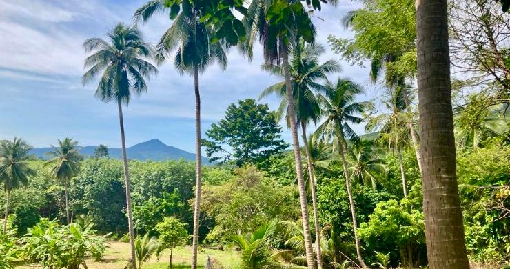 koh-phangan-sea-view-land-for-sale-ban-tai-2