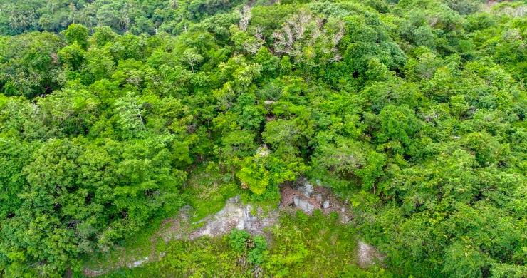 koh-samui-sea-view-land-for-sale-laem-yai-9