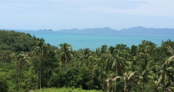 Pristine Sea View Land For Sale In Peaceful Bang Por-1