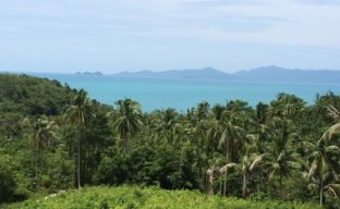 Pristine Sea View Land For Sale In Peaceful Bang Por