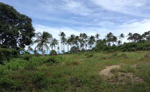 Peaceful Plot of Freehold Land by Samui Golf Course