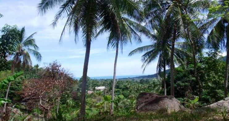 Superb Sea View Land Plots for Sale in Peaceful Lamai-3