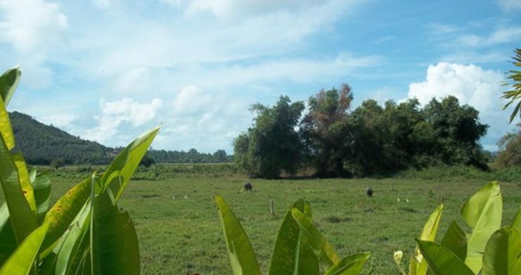 Bargain Serviced Land Plots in Beautiful Na Muang-2