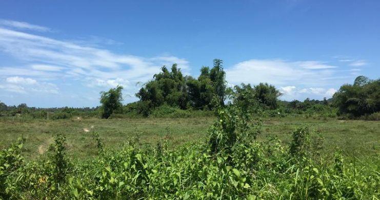 Bargain Serviced Land Plots in Beautiful Na Muang-1