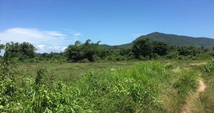 Bargain Serviced Land Plots in Beautiful Na Muang-4