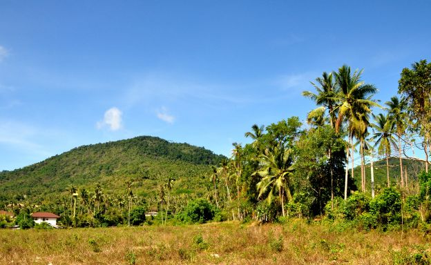 Unique Land Plots For Sale in Peaceful Maenam