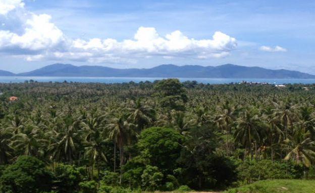Peaceful Sea View Land Plot for Sale on Maenam Hills