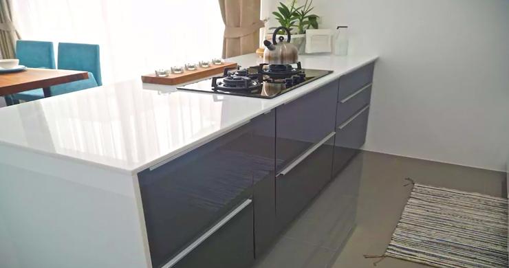 Newly Built Luxury 2 Bedroom Modern Villa in Maenam-5