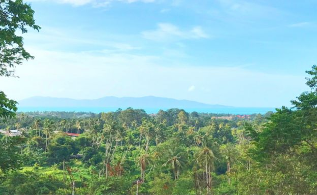Beautiful Sea-view Land for Sale in Bophut Hills