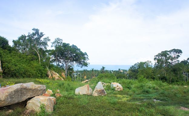Premium Sea-view Land Plots For Sale in Chaweng Noi