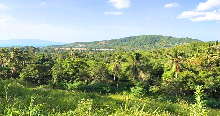 Prime Sea view Land Plots For Sale in Bophut Hills-7