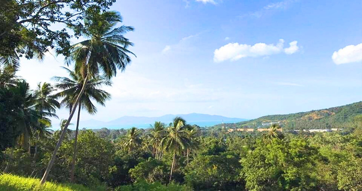 Prime Sea view Land Plots For Sale in Bophut Hills-4